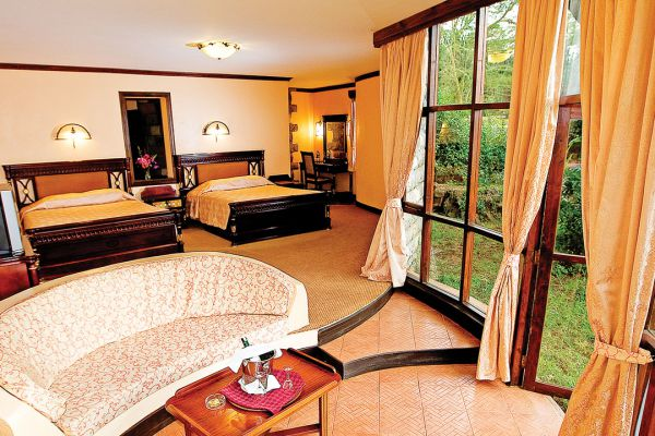 room-interiorF0B266B5-71C2-A81B-E477-19787931E649.jpg